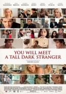 Скачать кинофильм Ты встретишь таинственного незнакомца