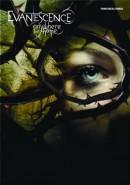 Скачать кинофильм Evanescence: Anywhere But Home
