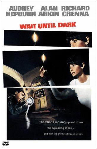 Скачать фильм Дождись темноты DVDRip без регистрации